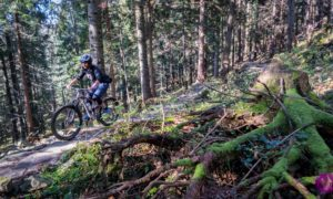 Babia Góra Trails