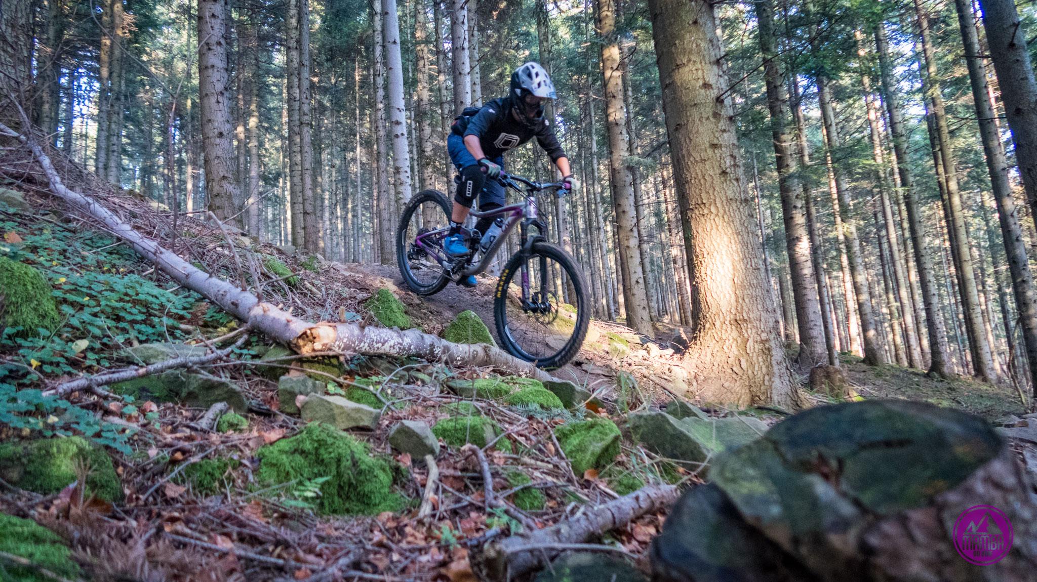 Babia Góra Trails - Diablak