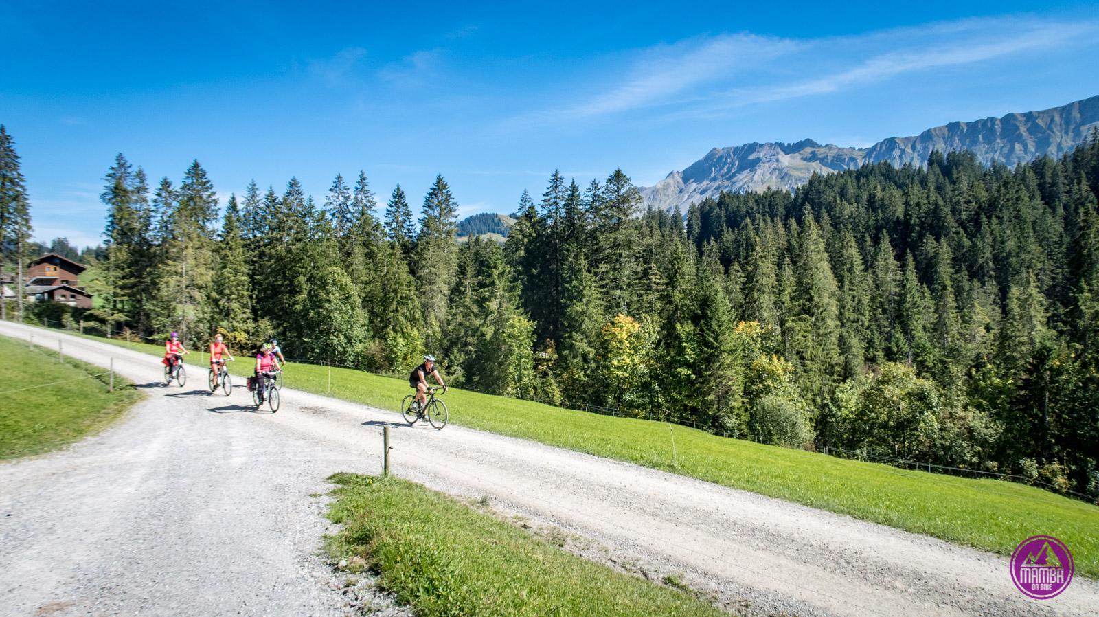 Alpejska Trasa Panoramiczna -  ebike