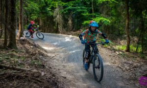 Skolnity Wisła Ski & Bike – familijny Zielony Zygzak
