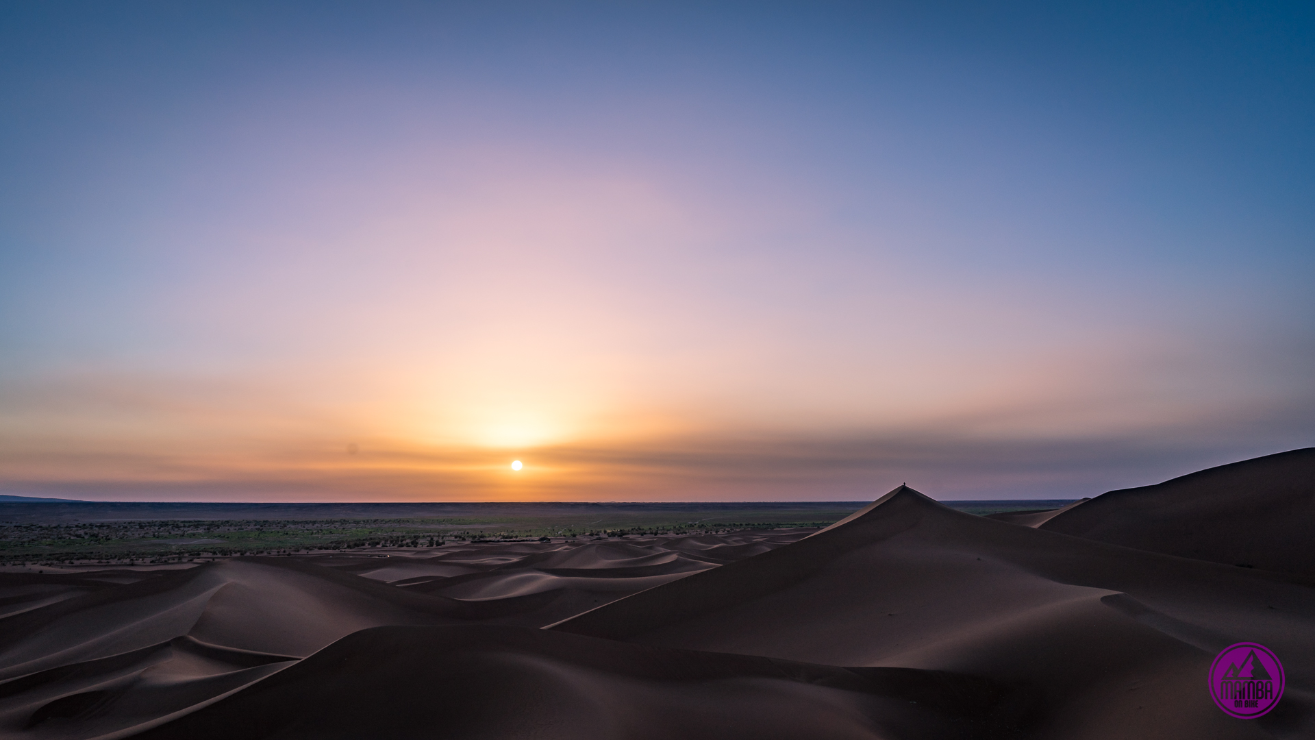 Poranek na pustyni