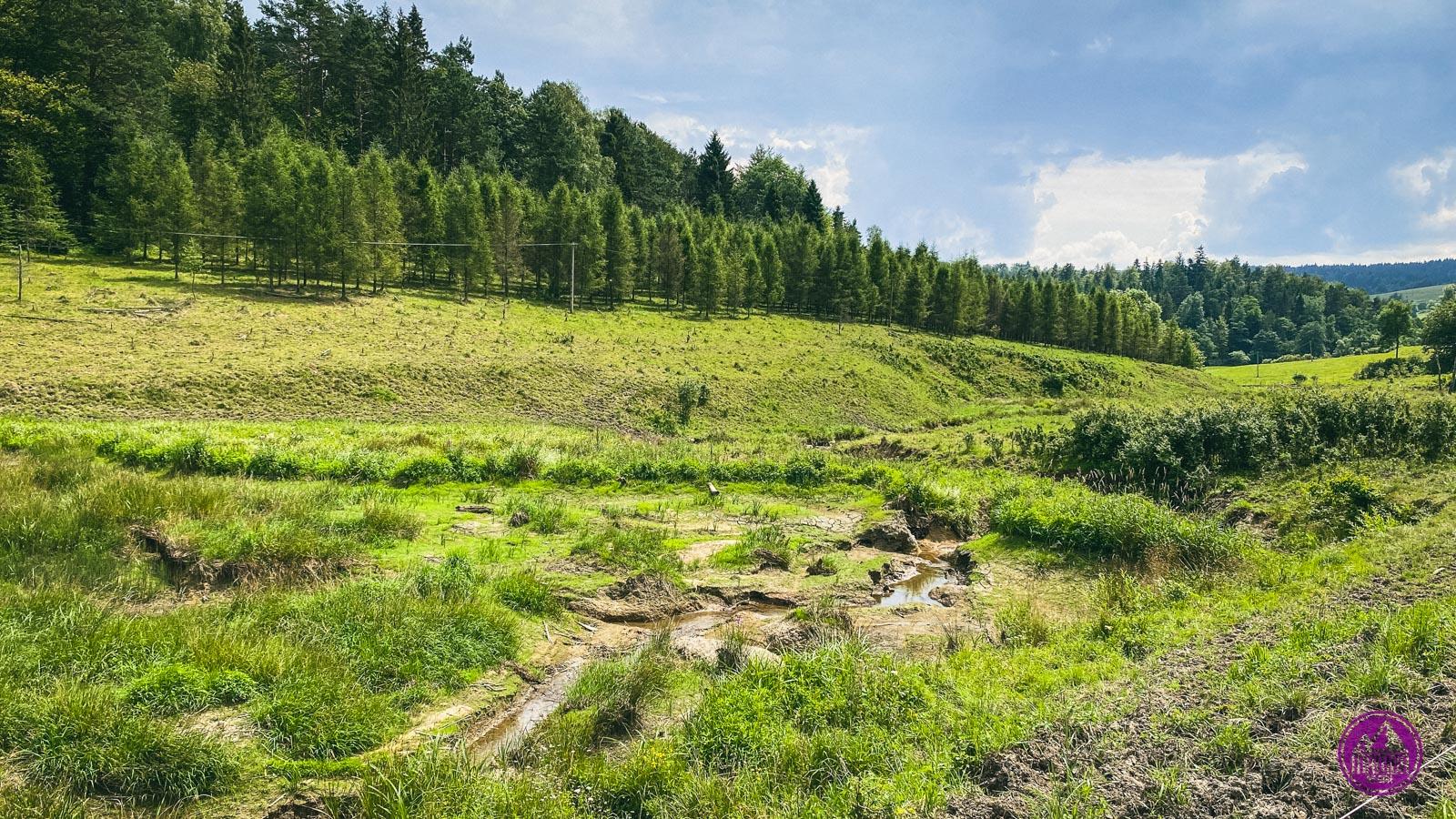 Beskid Niski żeremia bobrów