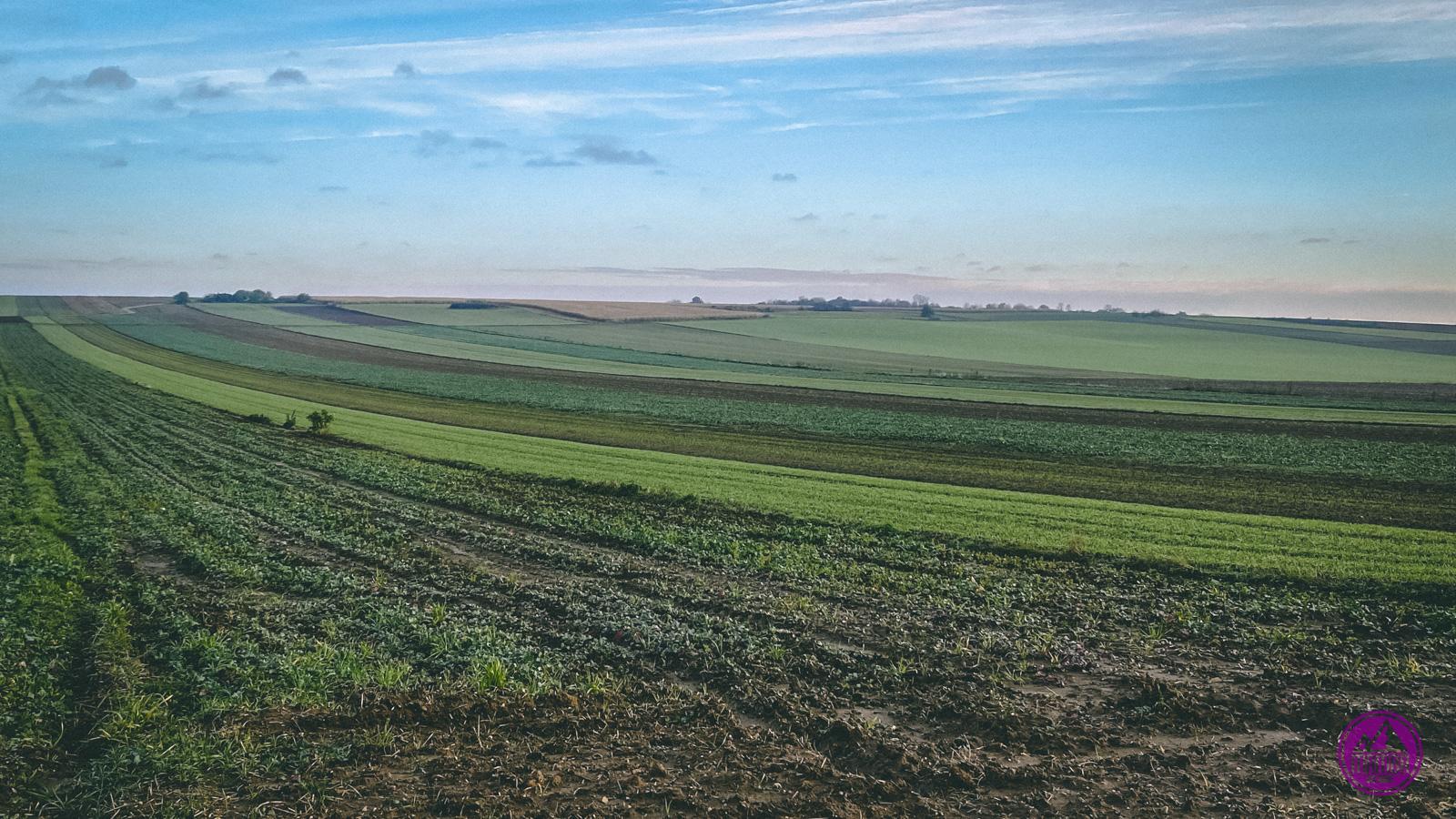 pola wokół Góry Świętej Anny