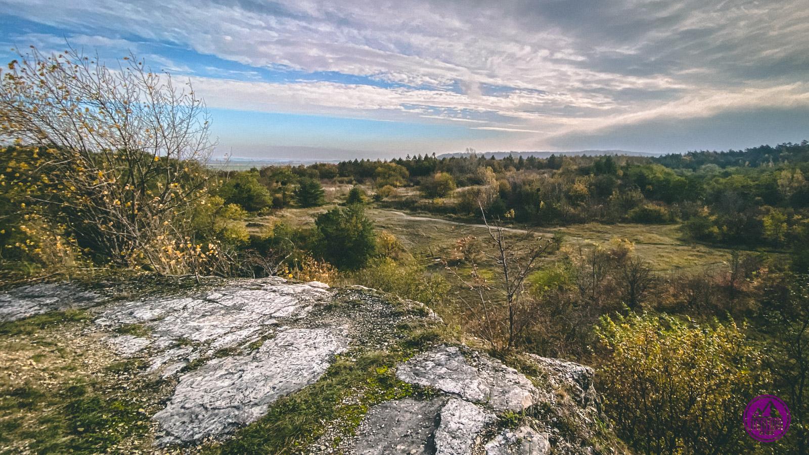 Rezerwat Przyrody Ligota Dolna