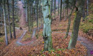 Singletrack Glacensis – jesienna pętla Kudowa Zdrój i Duszniki