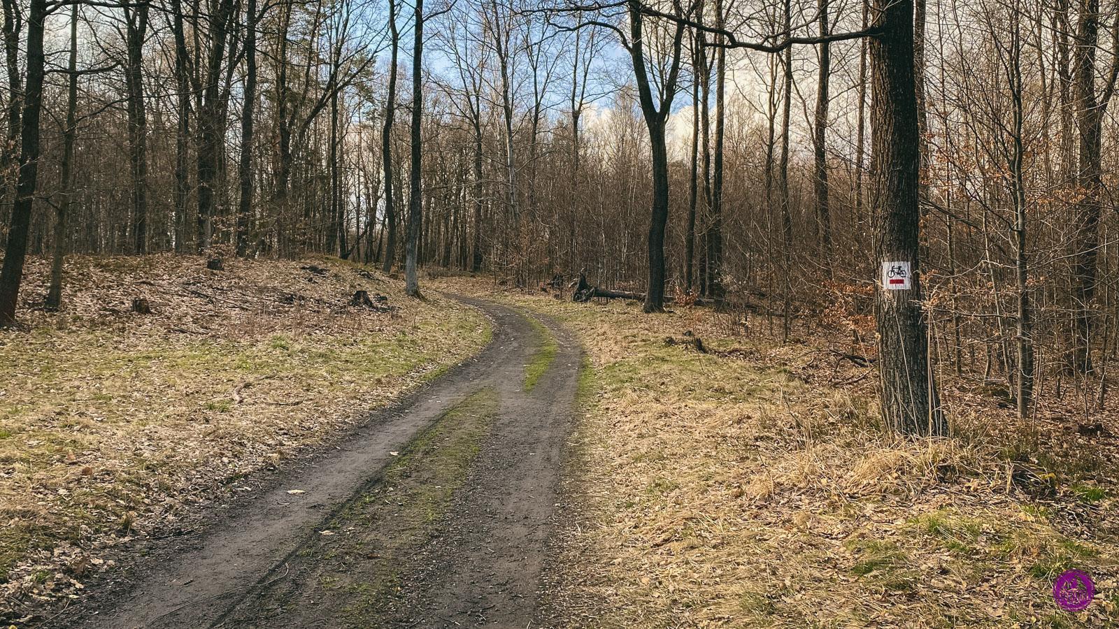 Załęska Hałda