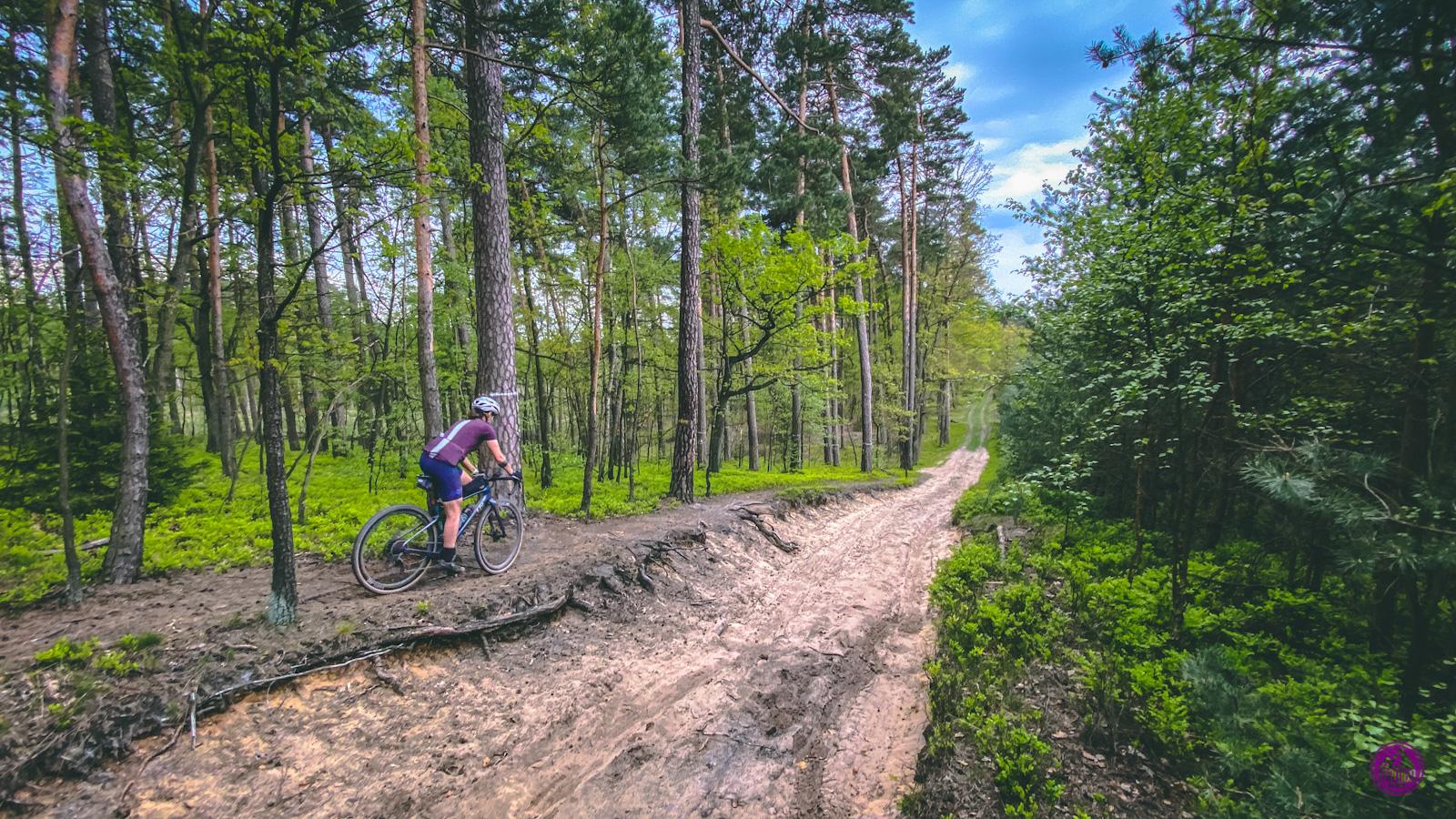 Szlak rowerowy Leśno Rajza