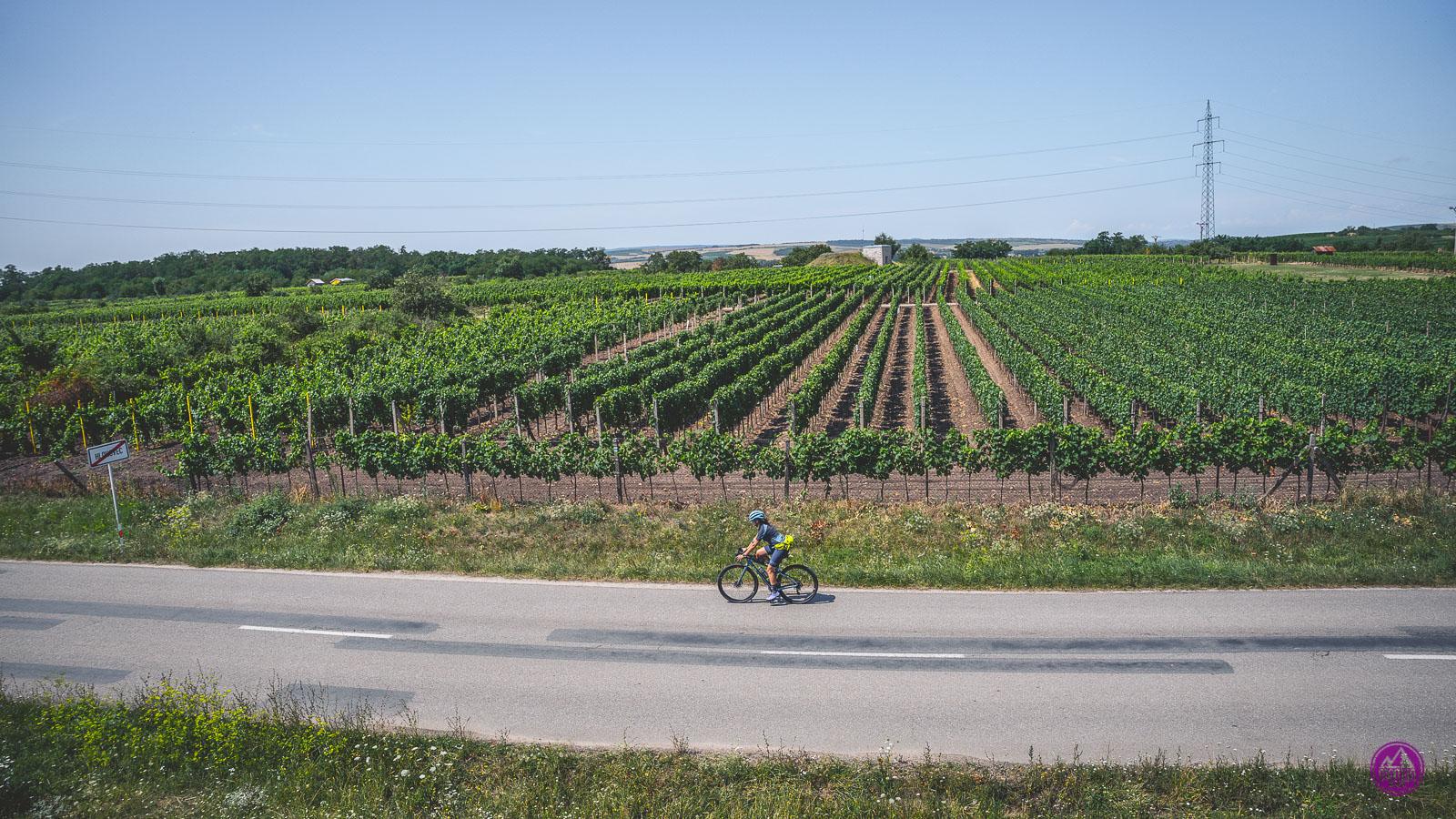 Morawy Południowe na rowerze