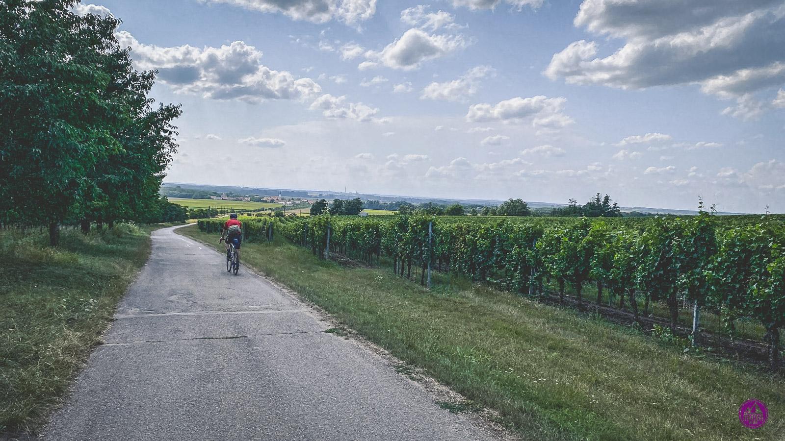 Morawskie Szlaki Winne