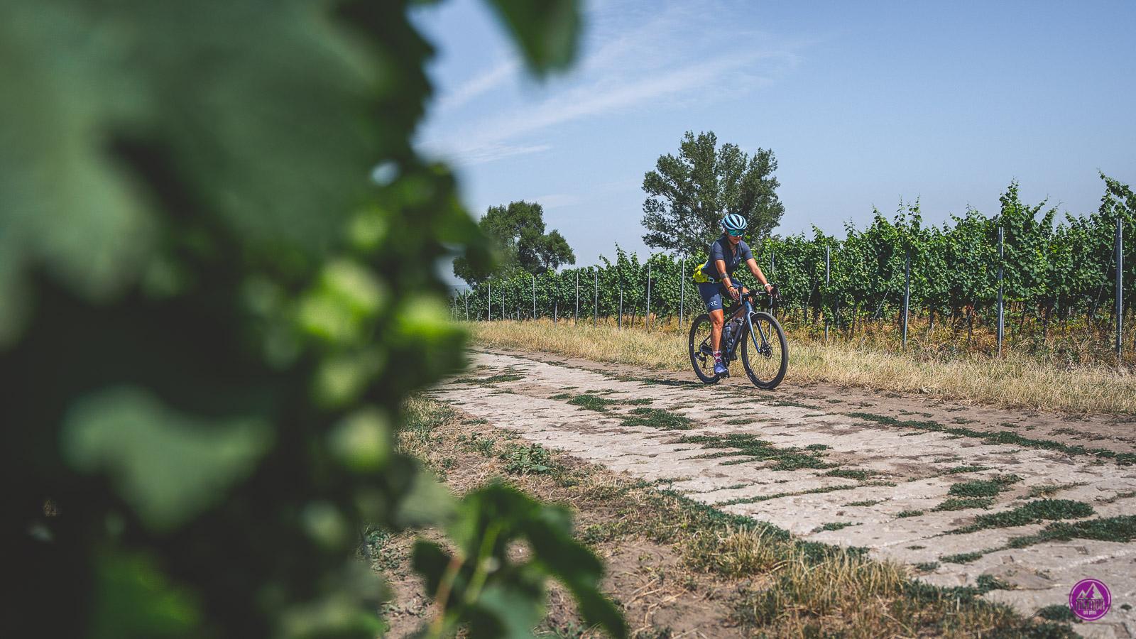 Morawy na rowerze