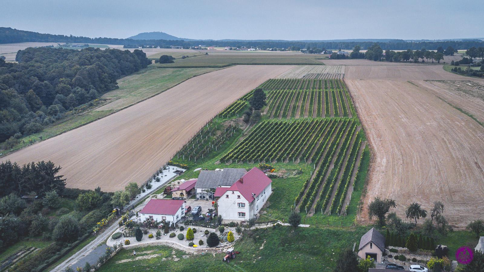 Dolnośląski Szlak Piwa i Wina